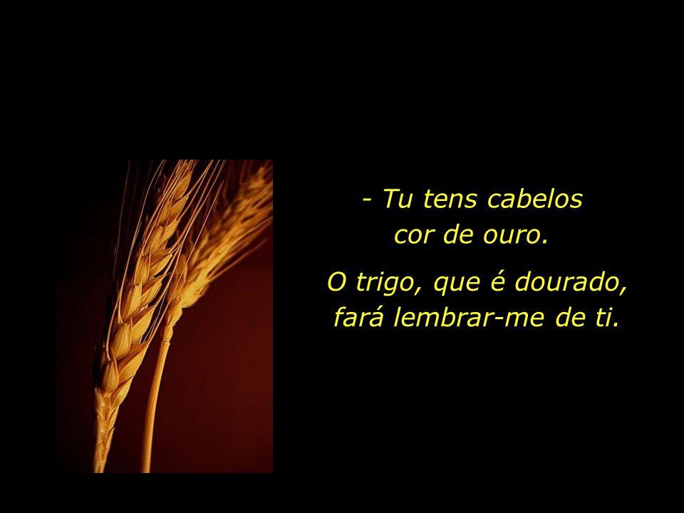 - Eu lucro por causa da cor do trigo...