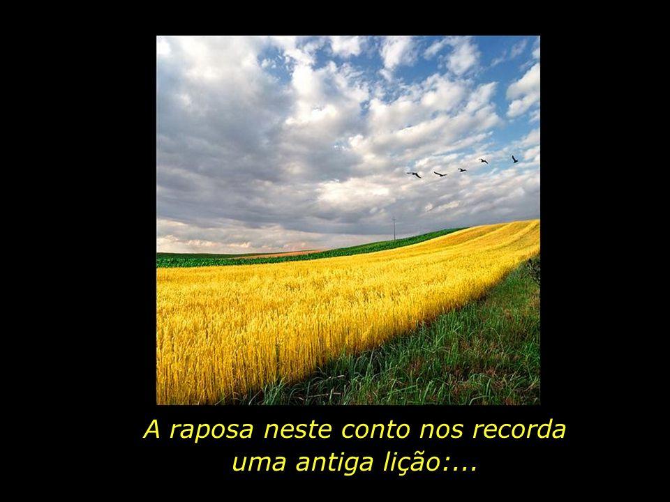 E amarei o barulho do vento no trigo...