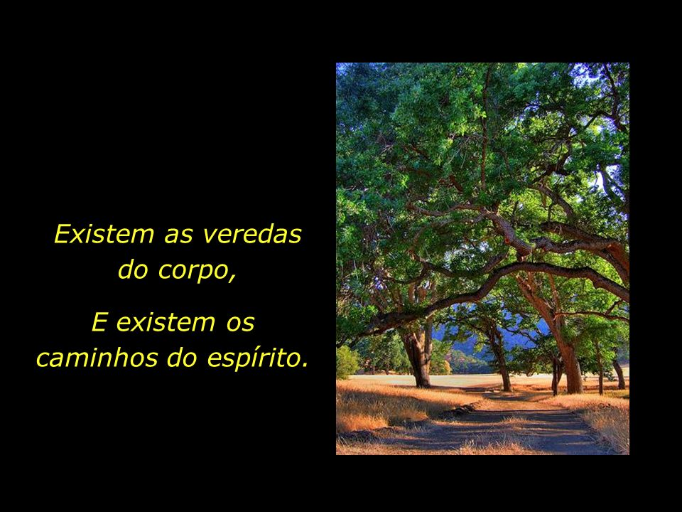 O instante em que a eternidade toca o tempo, conferindo sentido à nossa breve existência terrena.