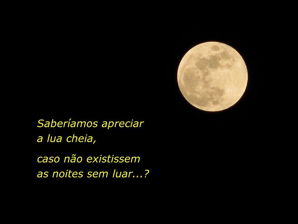 Raimundo Silva olhou e tornou a olhar, o universo murmura sob a chuva, José Saramago, em A História do Cerco de Lisboa Meu Deus, que doce e suave tris