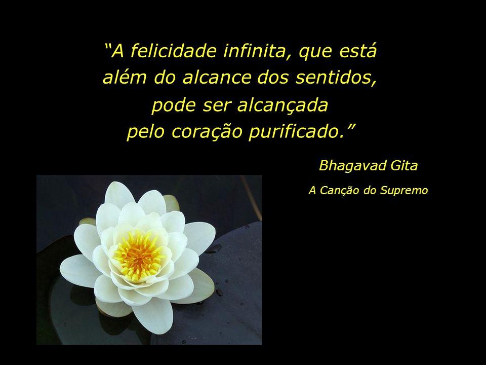 A felicidade nasce do praticar ações que deixam os outros felizes. Doutrina de Buda