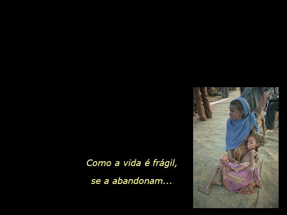 Como a vida é frágil, se a abandonam...