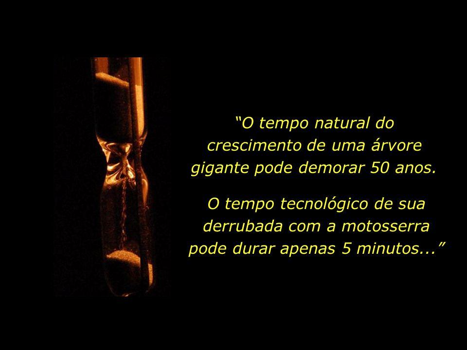 Que uso fazemos da experiência acumulada de todos os séculos que nos antecederam....