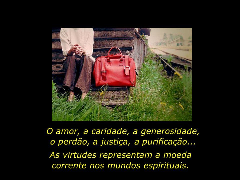 Desta breve vida terrena, a única bagagem que levaremos são as virtudes que cultivamos, as boas ações que realizamos.
