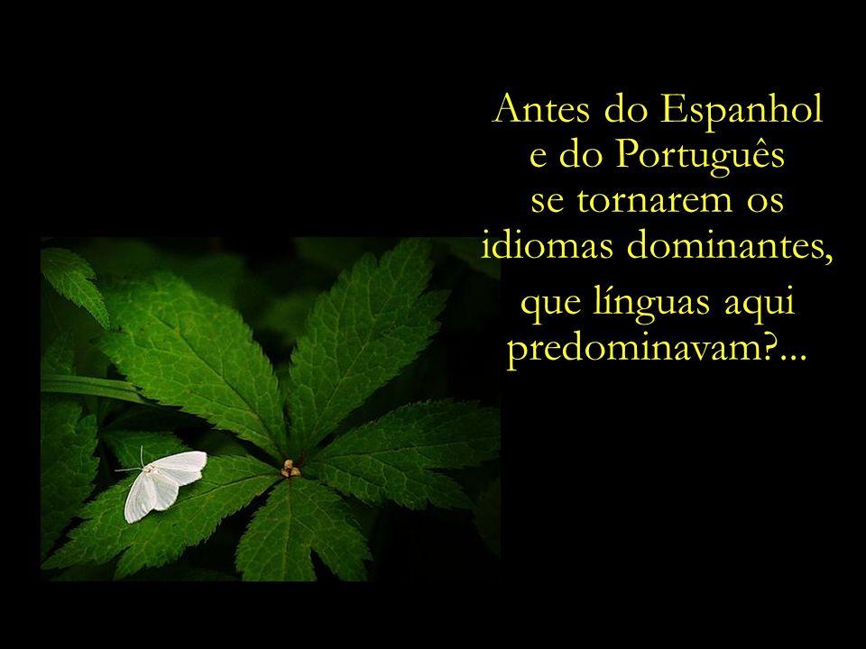 Antes do Espanhol e do Português se tornarem os idiomas dominantes, que línguas aqui predominavam?...