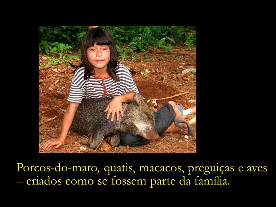 Diversas tribos indígenas mantêm um antigo costume de adoção de pequenos animais órfãos.