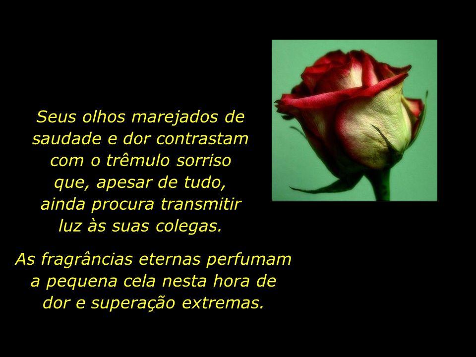 Tantos e tantos sentimentos e lembranças que evocam em seu coração, e que jamais serão conhecidos, - pois pertencem à linguagem que as palavras não tr