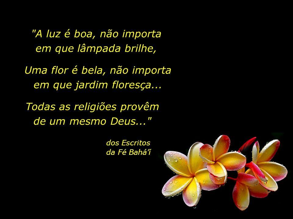 Alguns dos princípios da Fé Baháí são: - A Revelação Progressiva: há um só Deus, e todas as manifestações religiosas derivam sua inspiração de uma úni