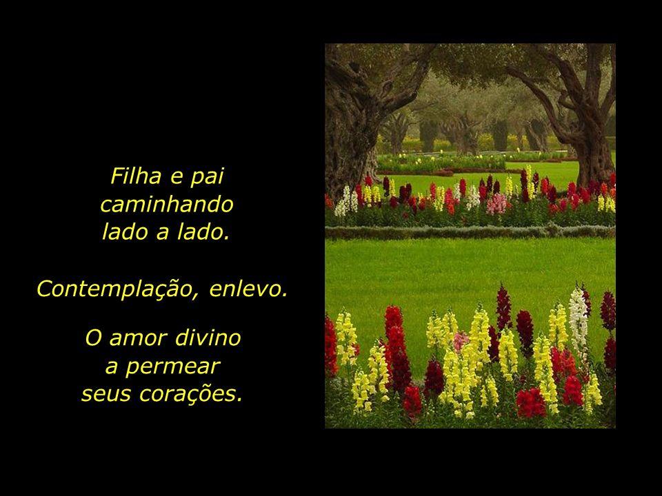 E nestes sonhos visitam os Locais Sagrados da Fé que abraçam, passeando por entre floridos alamedas e jardins. Detalhe dos jardins Santuário Baháí, ci