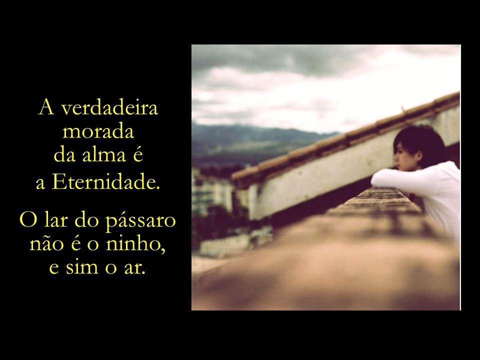 Ao final da última curva da última estrada desta vida terrena, sobre que horizontes a tua vista repousará?....