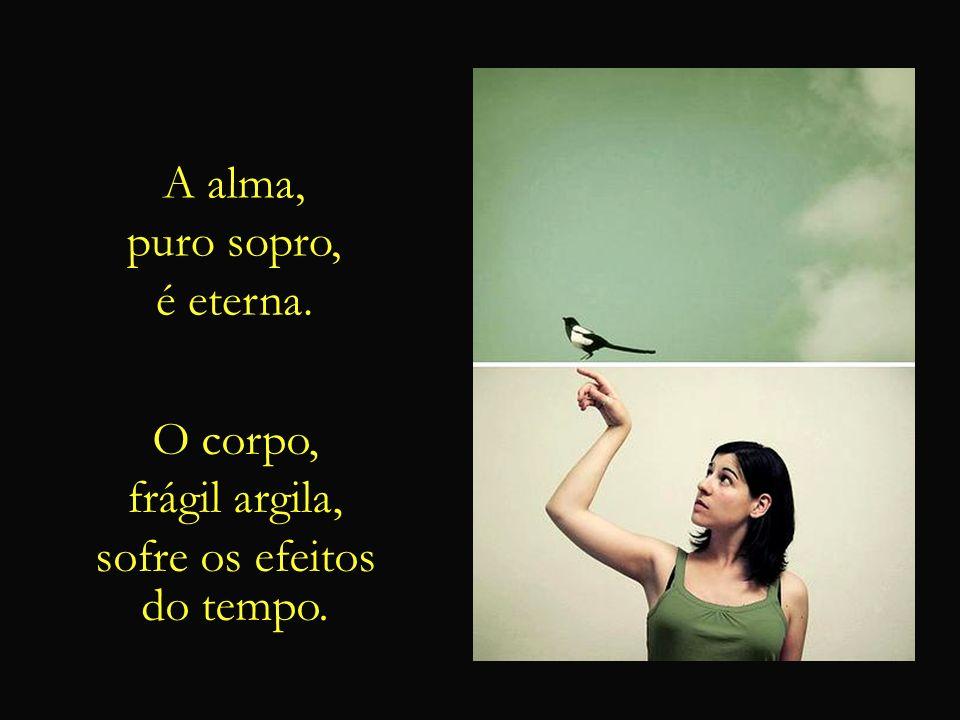E dentre as metáforas poéticas que os versos sagrados utilizam, uma das mais belas é a que compara o corpo a uma gaiola, e a alma a uma ave que nela h