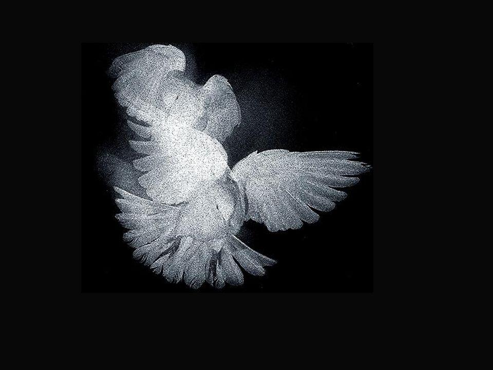 As asas do espírito. O suave voo. As alturas mais sublimes. E as melodias da alma...