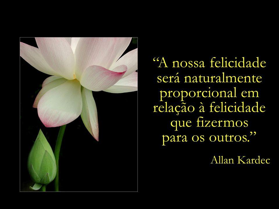 Não te detenhas em nenhuma posição espiritual que alcançaste, mas sim, deseja mais. Rumi