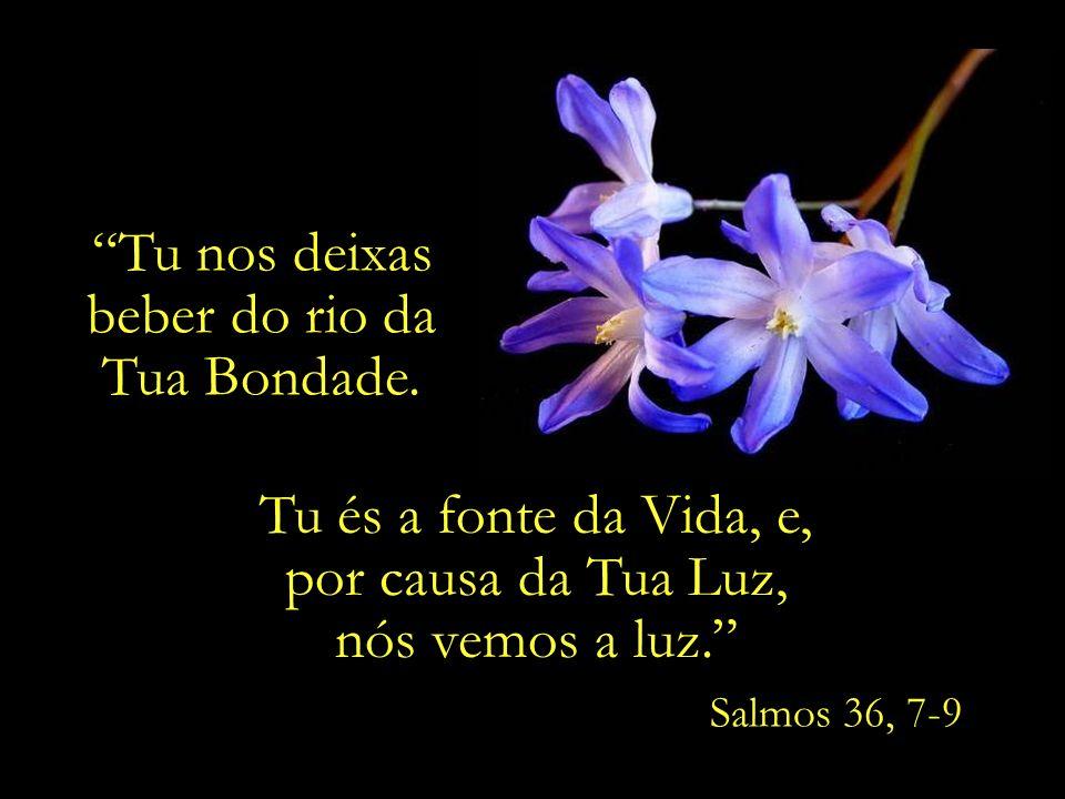 Ó Meu amigo, Ouve de coração e alma as canções do espírito, e valoriza-as como valorizas teus próprios olhos...