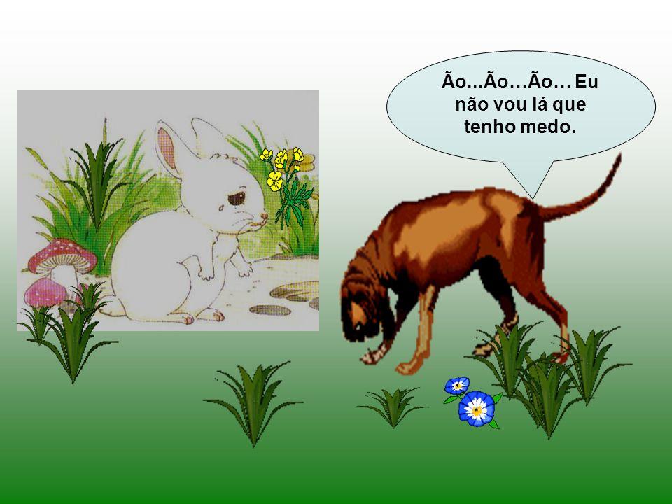 Nisto, surge um cão junto do coelhinho. Que tens tu, Coelhinho Branco? Porque vens tão triste? Eu fui à horta buscar couves para fazer um caldinho e q