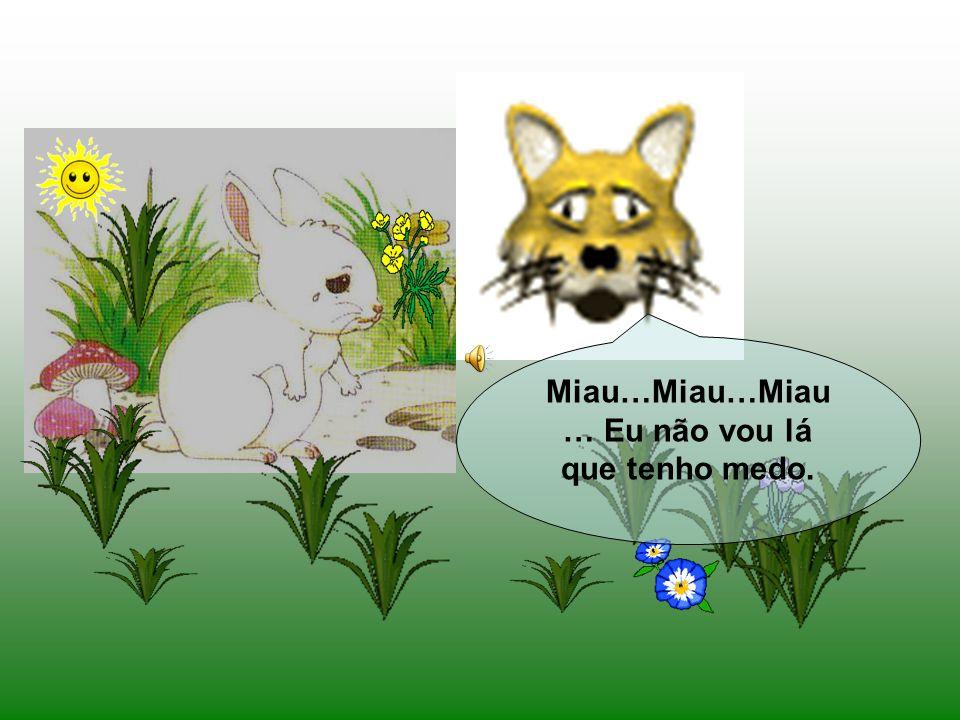 Passou, daí a pouco tempo, um gato e ao ver o coelhinho perguntou: Que tens tu, Coelhinho Branco? Porque vens tão triste? Eu fui à horta buscar couves