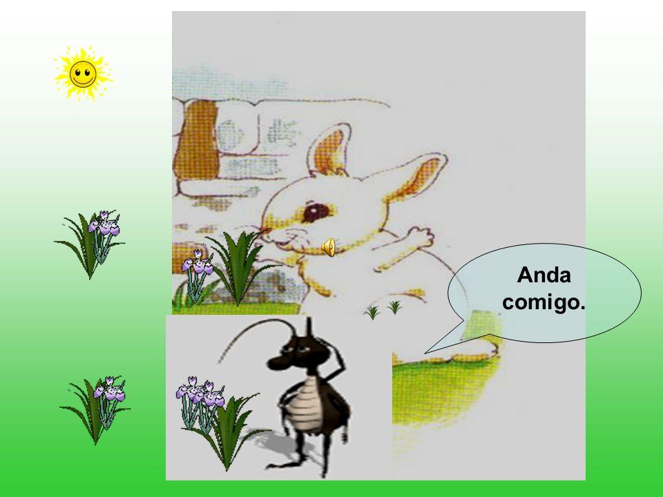 O Coelhinho Branco já estava muito desanimado, quando surgiu na sua frente uma formiguinha. Que tens tu, Coelhinho Branco? Porque vens tão triste? Eu