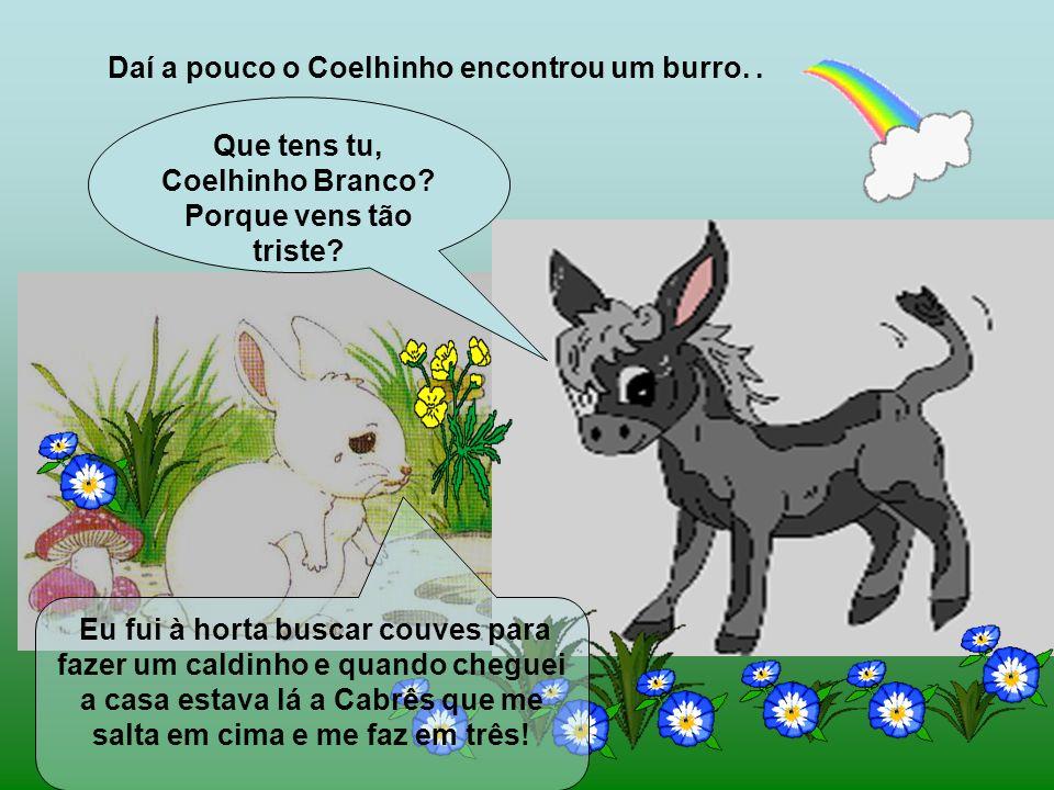 Daí a pouco o Coelhinho encontrou um burro..Que tens tu, Coelhinho Branco.