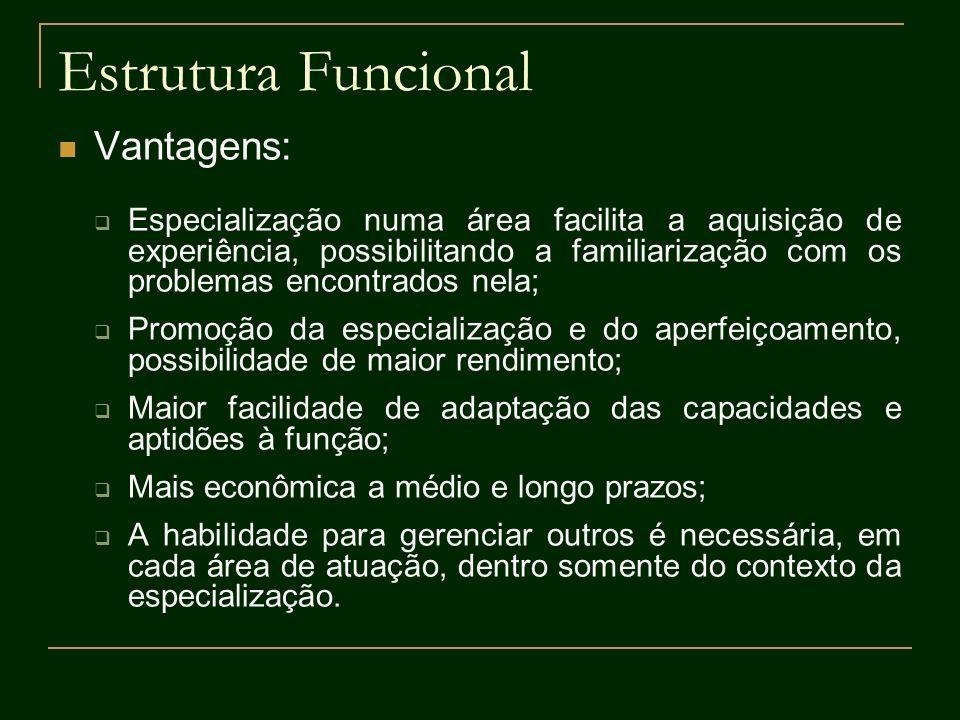 Estrutura Funcional Vantagens: Especialização numa área facilita a aquisição de experiência, possibilitando a familiarização com os problemas encontra
