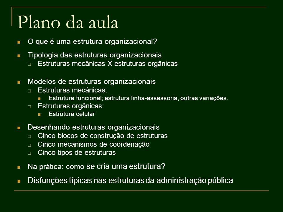 Estrutura Divisional Característica central: descentralização de uma organização em unidades com grande autonomia (como um conjunto de mini-organizações).