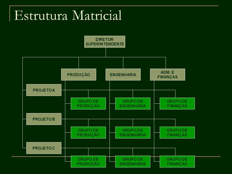 Estrutura Matricial DIRETOR SUPERINTENDENTE ADM. E FINANÇAS ENGENHARIAPRODUÇÃO PROJETO C PROJETO B PROJETO A GRUPO DE PRODUÇÃO GRUPO DE FINANÇAS GRUPO