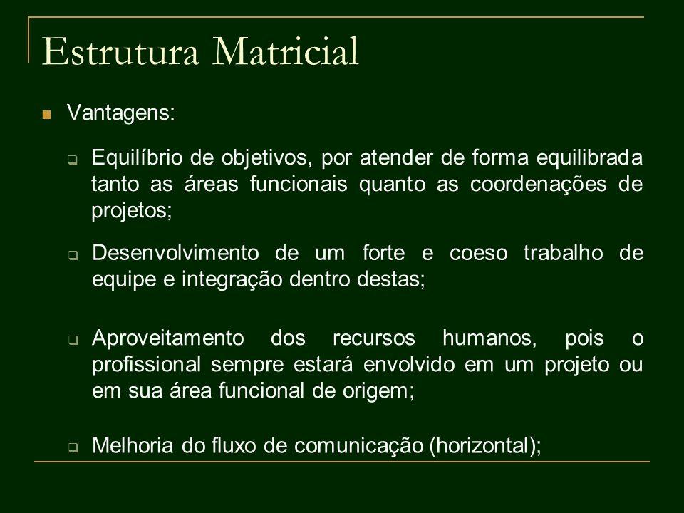 Estrutura Matricial Vantagens: Equilíbrio de objetivos, por atender de forma equilibrada tanto as áreas funcionais quanto as coordenações de projetos;