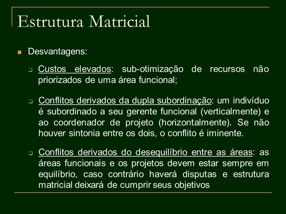 Estrutura Matricial Desvantagens: Custos elevados: sub-otimização de recursos não priorizados de uma área funcional; Conflitos derivados da dupla subo