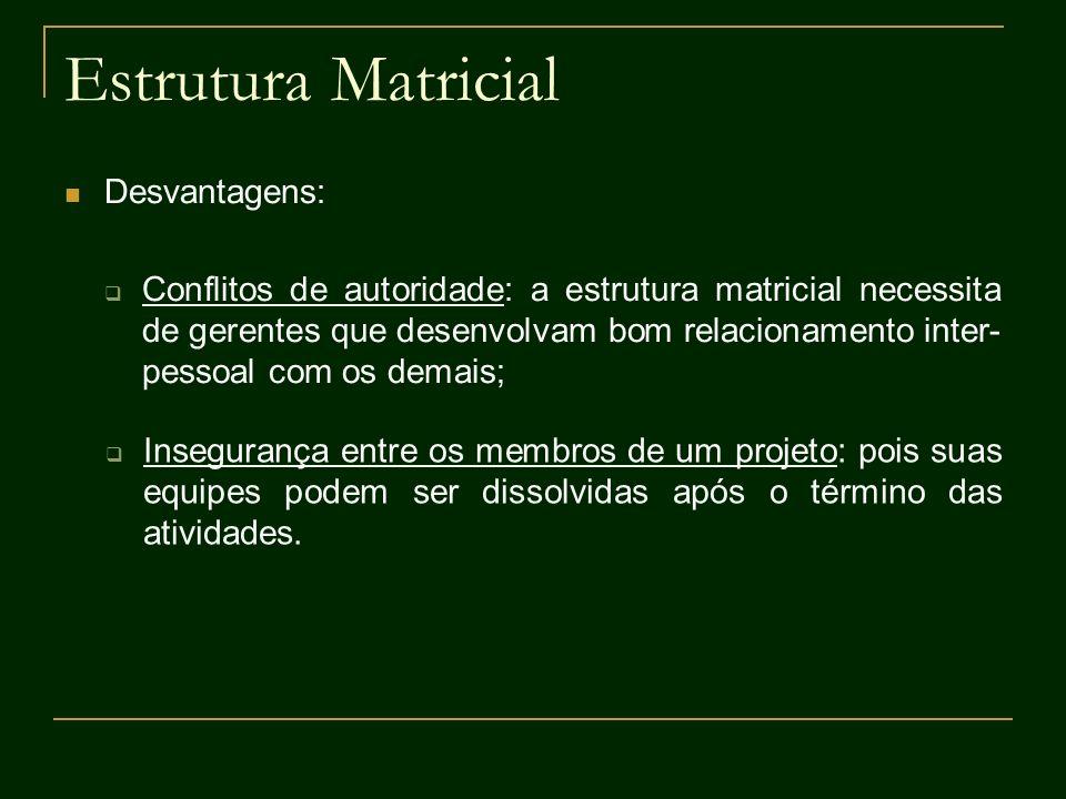 Estrutura Matricial Desvantagens: Conflitos de autoridade: a estrutura matricial necessita de gerentes que desenvolvam bom relacionamento inter- pesso