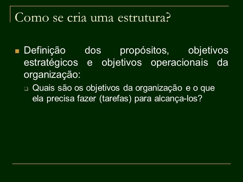 Como se cria uma estrutura? Definição dos propósitos, objetivos estratégicos e objetivos operacionais da organização: Quais são os objetivos da organi
