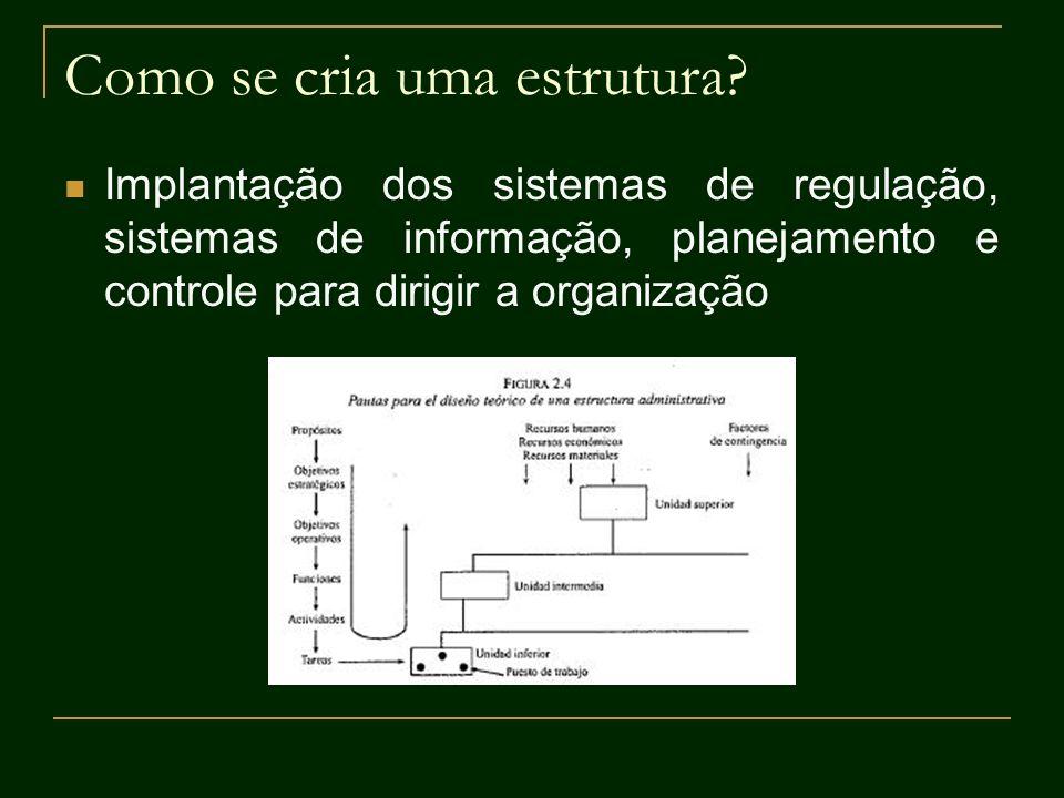 Como se cria uma estrutura? Implantação dos sistemas de regulação, sistemas de informação, planejamento e controle para dirigir a organização