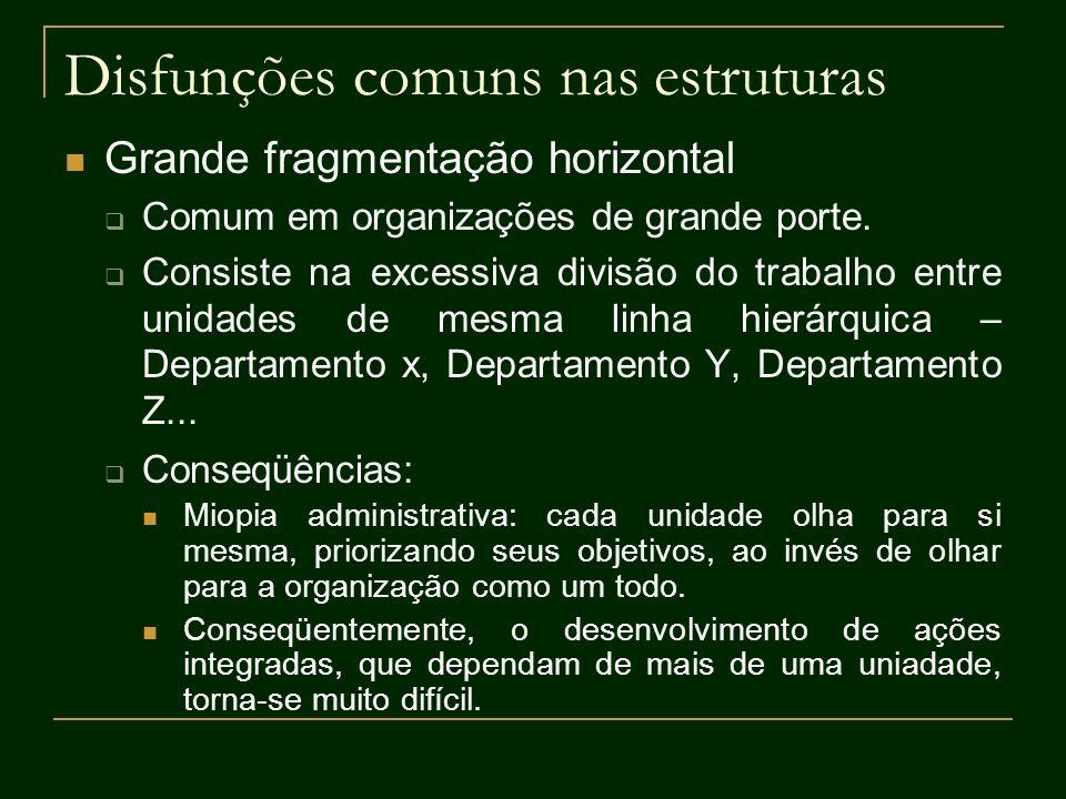 Disfunções comuns nas estruturas Grande fragmentação horizontal Comum em organizações de grande porte. Consiste na excessiva divisão do trabalho entre