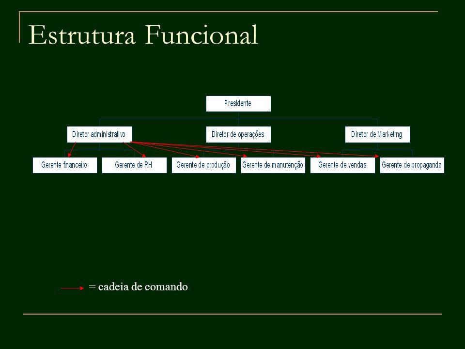 Estrutura Matricial Desvantagens: Custos elevados: sub-otimização de recursos não priorizados de uma área funcional; Conflitos derivados da dupla subordinação: um indivíduo é subordinado a seu gerente funcional (verticalmente) e ao coordenador de projeto (horizontalmente).