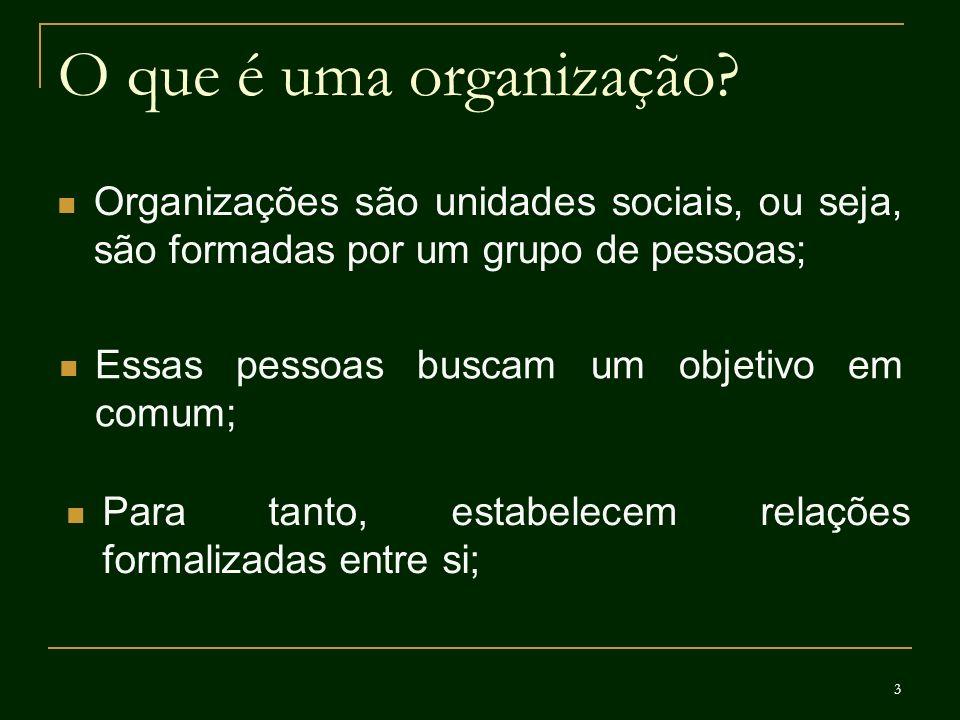 3 O que é uma organização? Organizações são unidades sociais, ou seja, são formadas por um grupo de pessoas; Essas pessoas buscam um objetivo em comum
