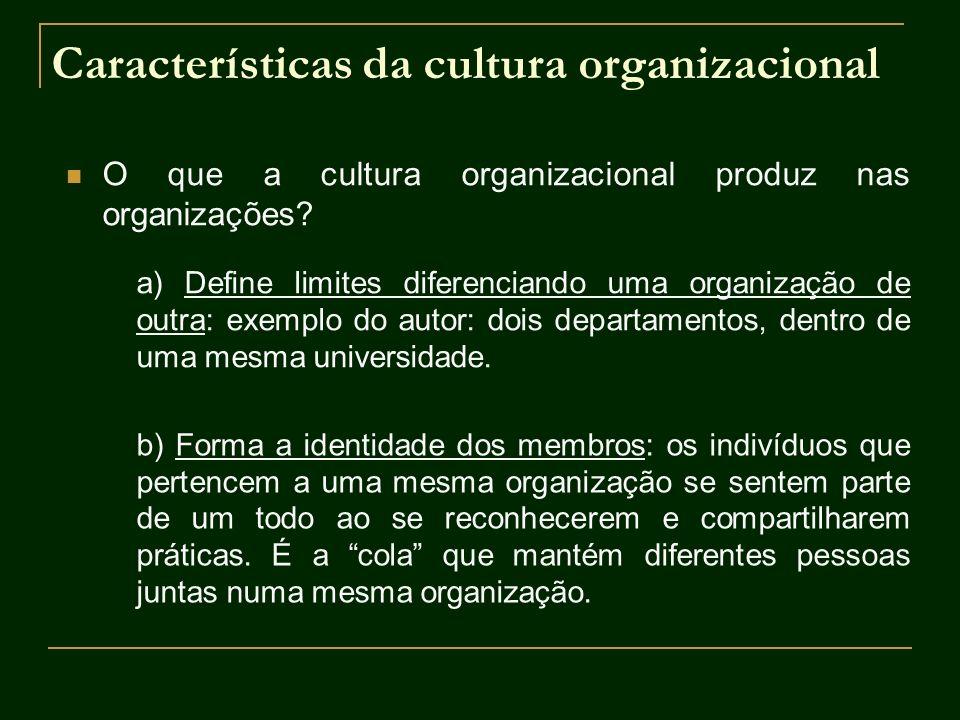 Características da cultura organizacional O que a cultura organizacional produz nas organizações? a) Define limites diferenciando uma organização de o