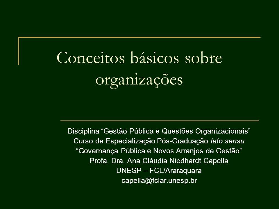 12 Dimensões contextuais da organização Tamanho Envolve: (a) capacidade física (capacidade de produção, capacidade de atendimento); (b) quantidade de pessoas numa organização; c) recursos disponíveis (bens).