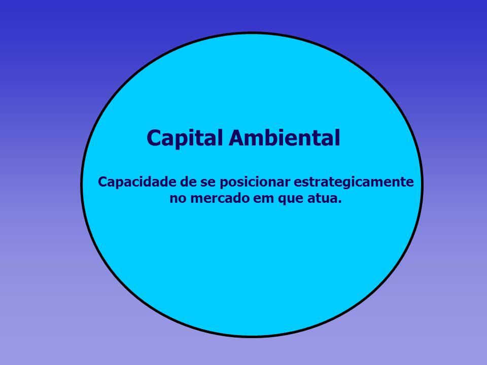 Capital Ambiental Capacidade de se posicionar estrategicamente no mercado em que atua.