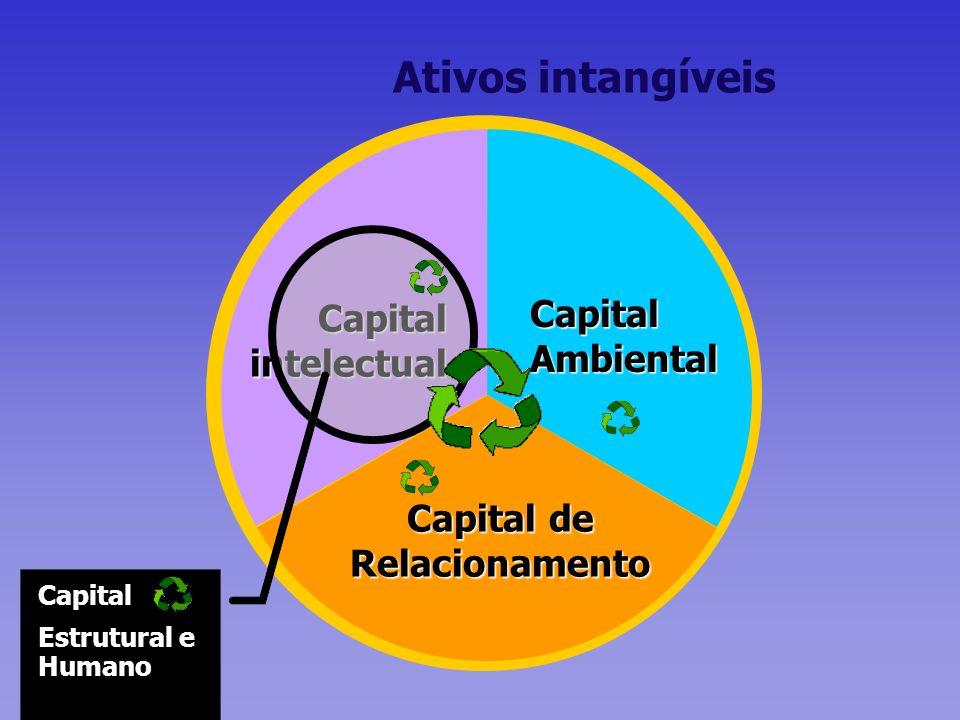 Capital Ambiental Capital de Relacionamento Capital intelectual Capital Estrutural e Humano Ativos intangíveis