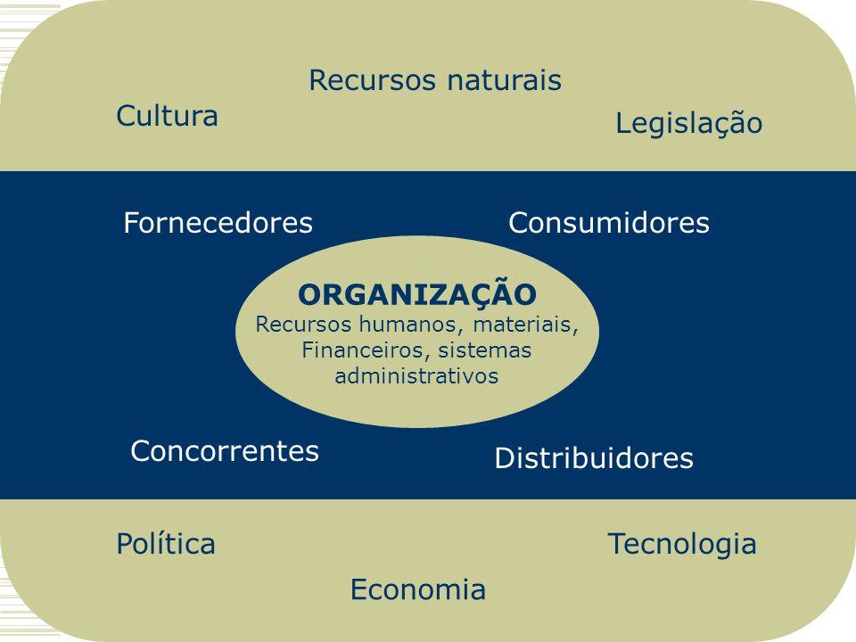 ORGANIZAÇÃO Recursos humanos, materiais, Financeiros, sistemas administrativos Fornecedores Distribuidores Concorrentes Consumidores Política Legislaç