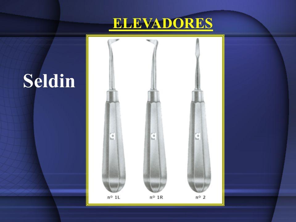 ELEVADORES Seldin