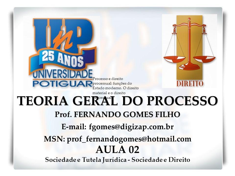 TEORIA GERAL DO PROCESSO FERNANDO GOMES FILHO Prof. FERNANDO GOMES FILHO E-mail: fgomes@digizap.com.br MSN: prof_fernandogomes@hotmail.com AULA 02 Soc