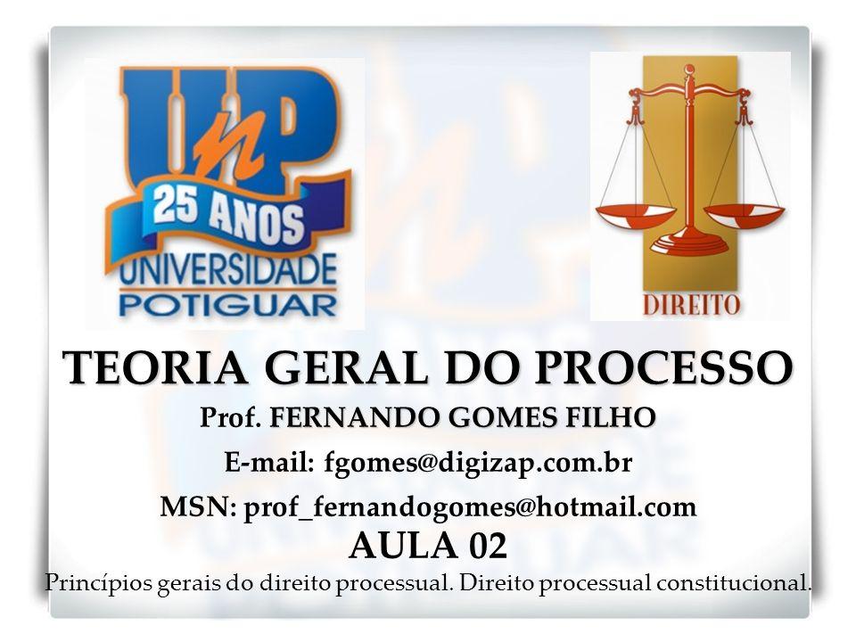 TEORIA GERAL DO PROCESSO FERNANDO GOMES FILHO Prof. FERNANDO GOMES FILHO E-mail: fgomes@digizap.com.br MSN: prof_fernandogomes@hotmail.com AULA 02 Pri