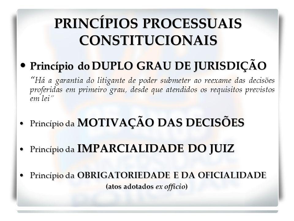 PRINCÍPIOS PROCESSUAIS CONSTITUCIONAIS Princípio do DUPLO GRAU DE JURISDIÇÃO Princípio do DUPLO GRAU DE JURISDIÇÃO Há a garantia do litigante de poder