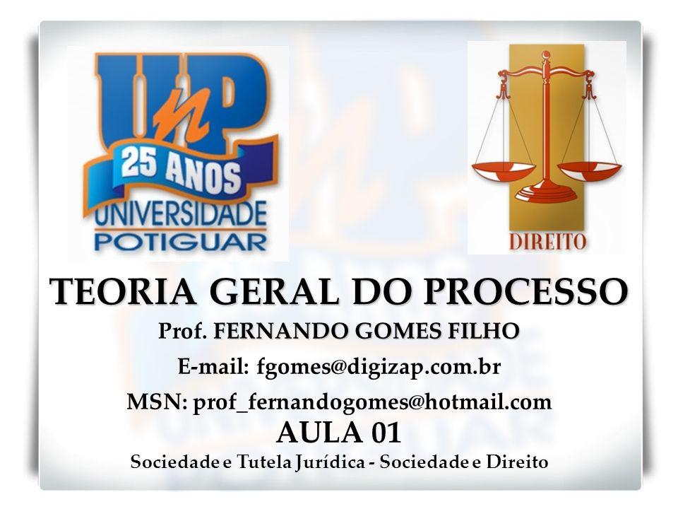 TEORIA GERAL DO PROCESSO FERNANDO GOMES FILHO Prof. FERNANDO GOMES FILHO E-mail: fgomes@digizap.com.br MSN: prof_fernandogomes@hotmail.com AULA 01 Soc