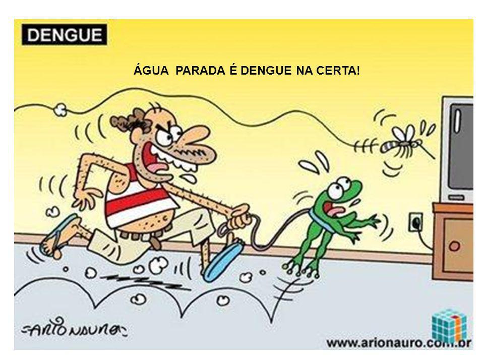 ÁGUA PARADA É DENGUE NA CERTA!