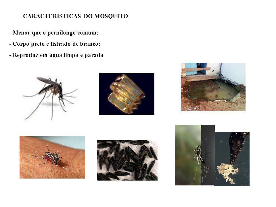 Agente causador: vírus Agente transmissor: mosquito Aedes aegypti