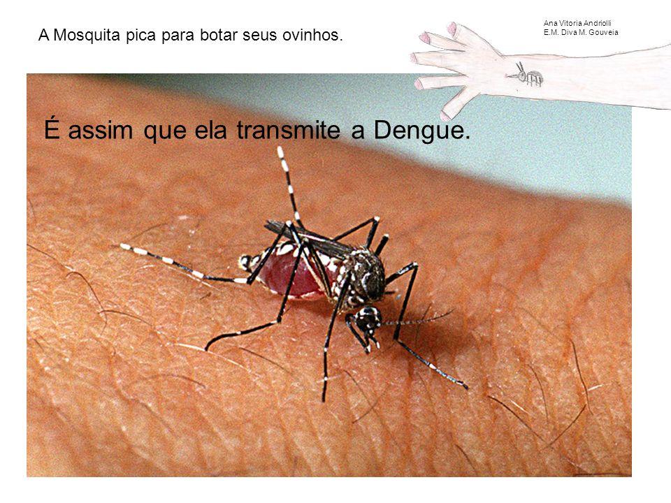 A Mosquita pica para botar seus ovinhos.É assim que ela transmite a Dengue.