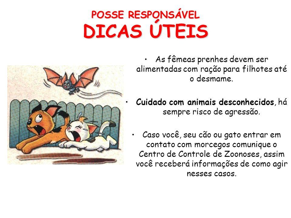 POSSE RESPONSÁVEL DICAS ÚTEIS Os animais são protegidos pela Lei n.9.605 de 12 fevereiro de 1988 no seu artigo 32– Praticar ato de abuso, maus tratos,