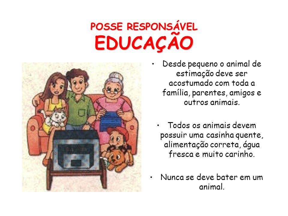 A posse responsável inicia-se antes de adquirir o animal. Deve-se ter em mente que o animal precisa de cuidados, como alimentação, acompanhamento vete