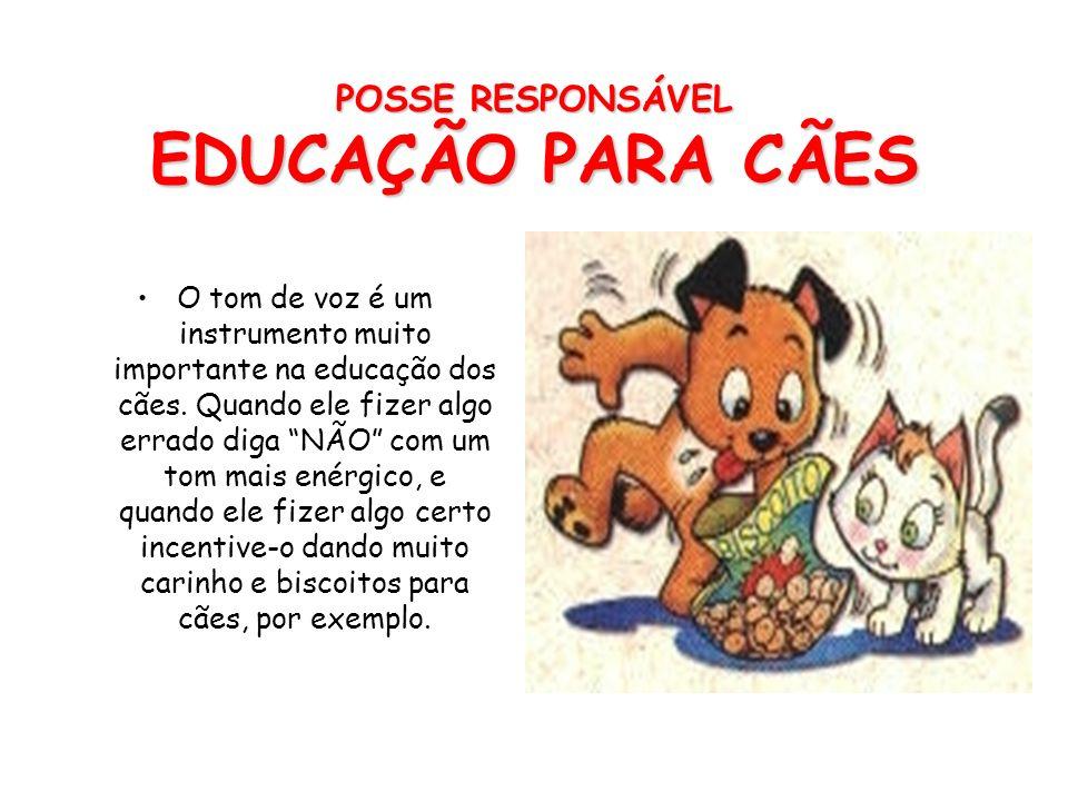 POSSE RESPONSÁVEL EDUCAÇÃO Desde pequeno o animal de estimação deve ser acostumado com toda a família, parentes, amigos e outros animais. Todos os ani
