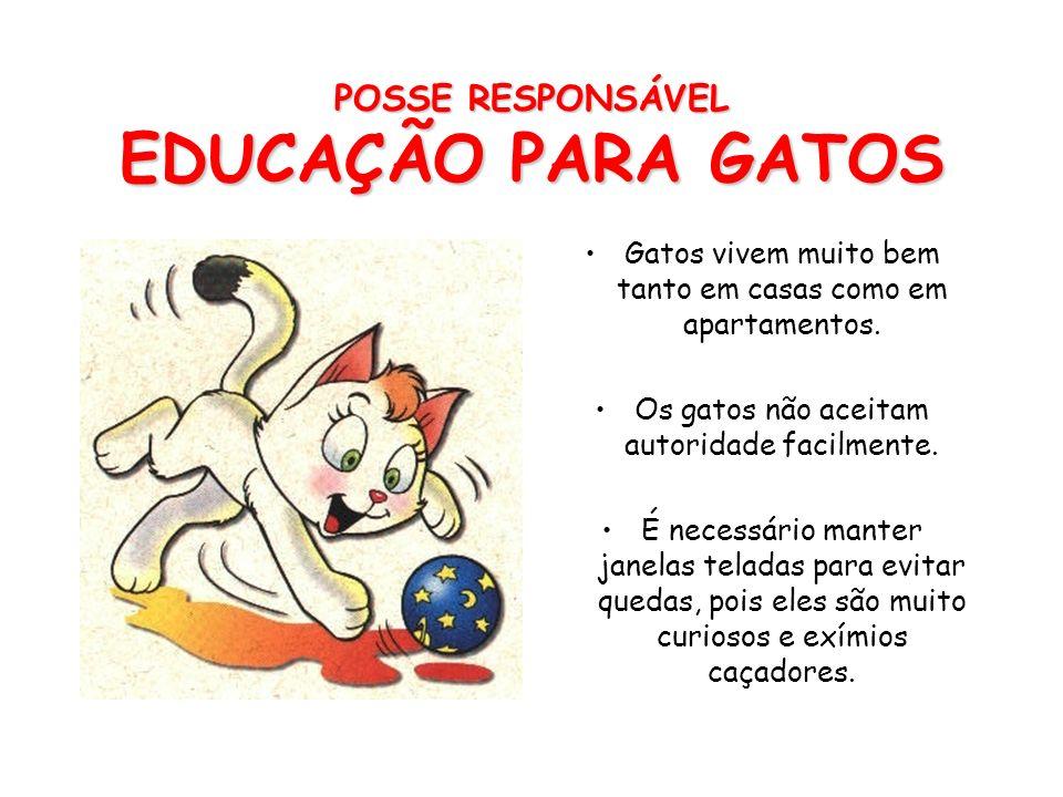 POSSE RESPONSÁVEL EDUCAÇÃO PARA CÃES O tom de voz é um instrumento muito importante na educação dos cães. Quando ele fizer algo errado diga NÃO com um